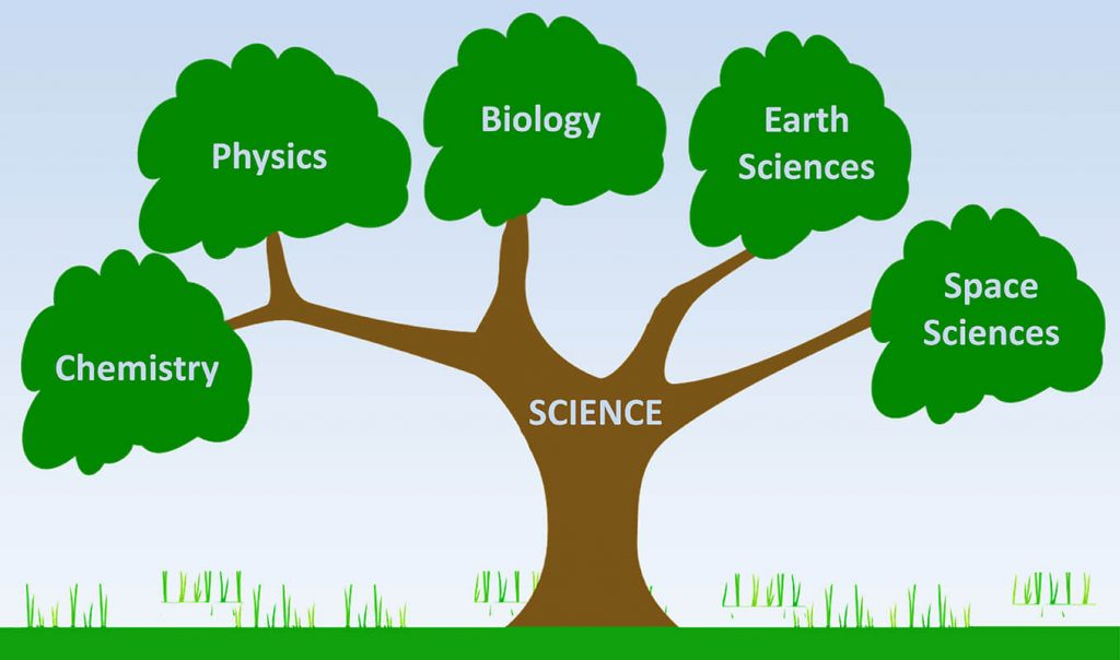 branches of science chemistry physics biology earth space