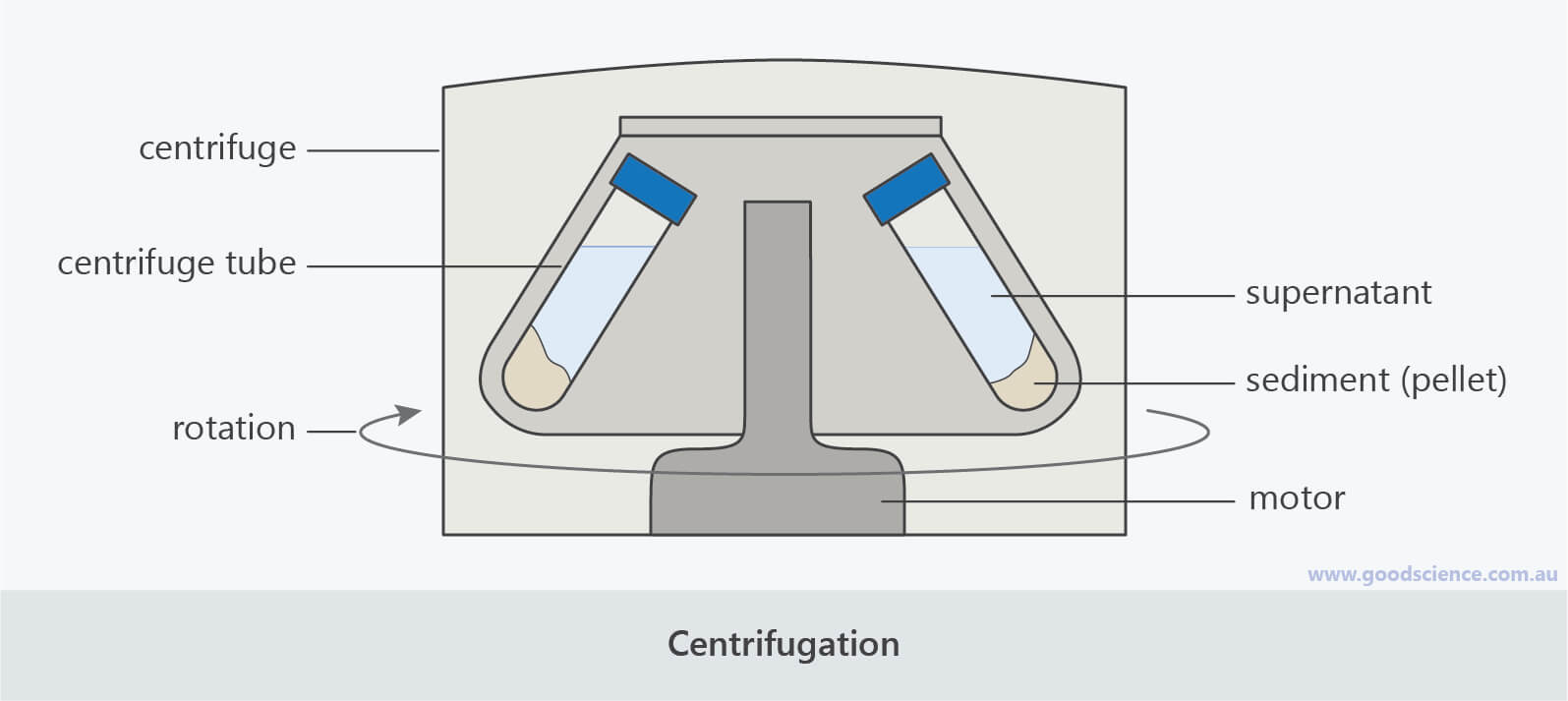 centrifugation labelled scientific laboratory diagram