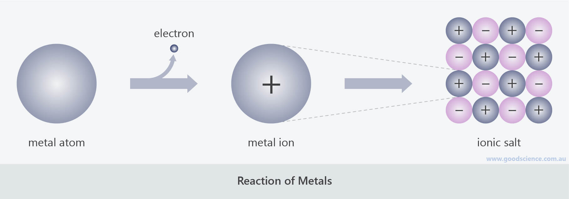 chemical reactions of metals