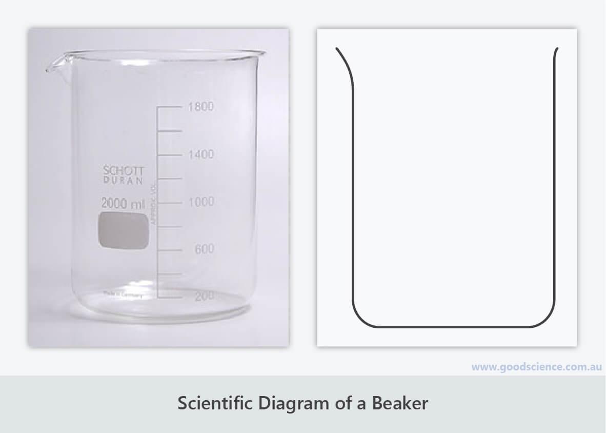 scientific diagram beaker