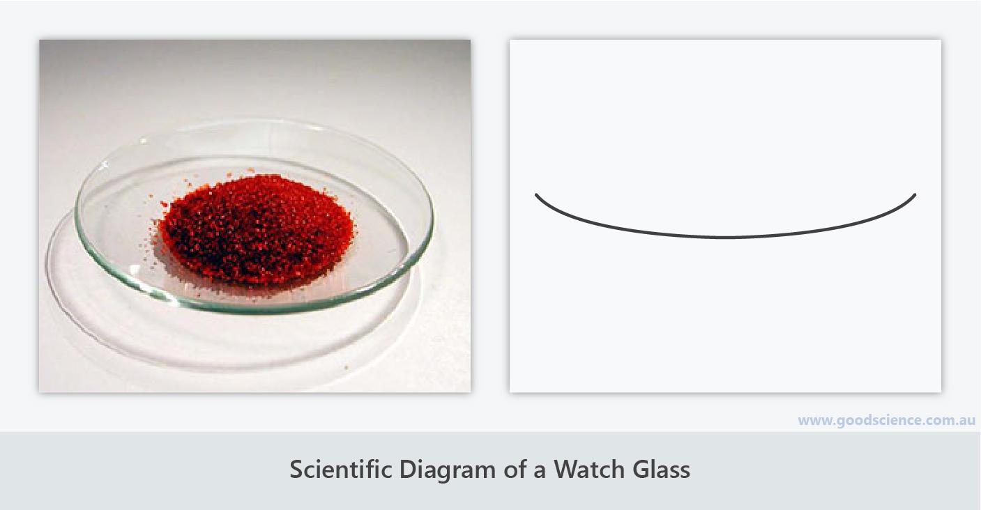 scientific diagram watch glass