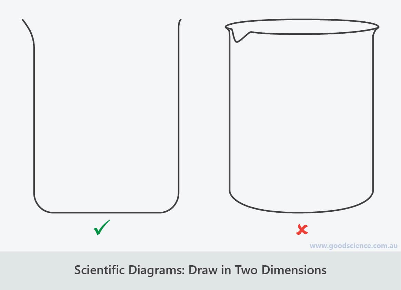 scientific diagrams two dimensions
