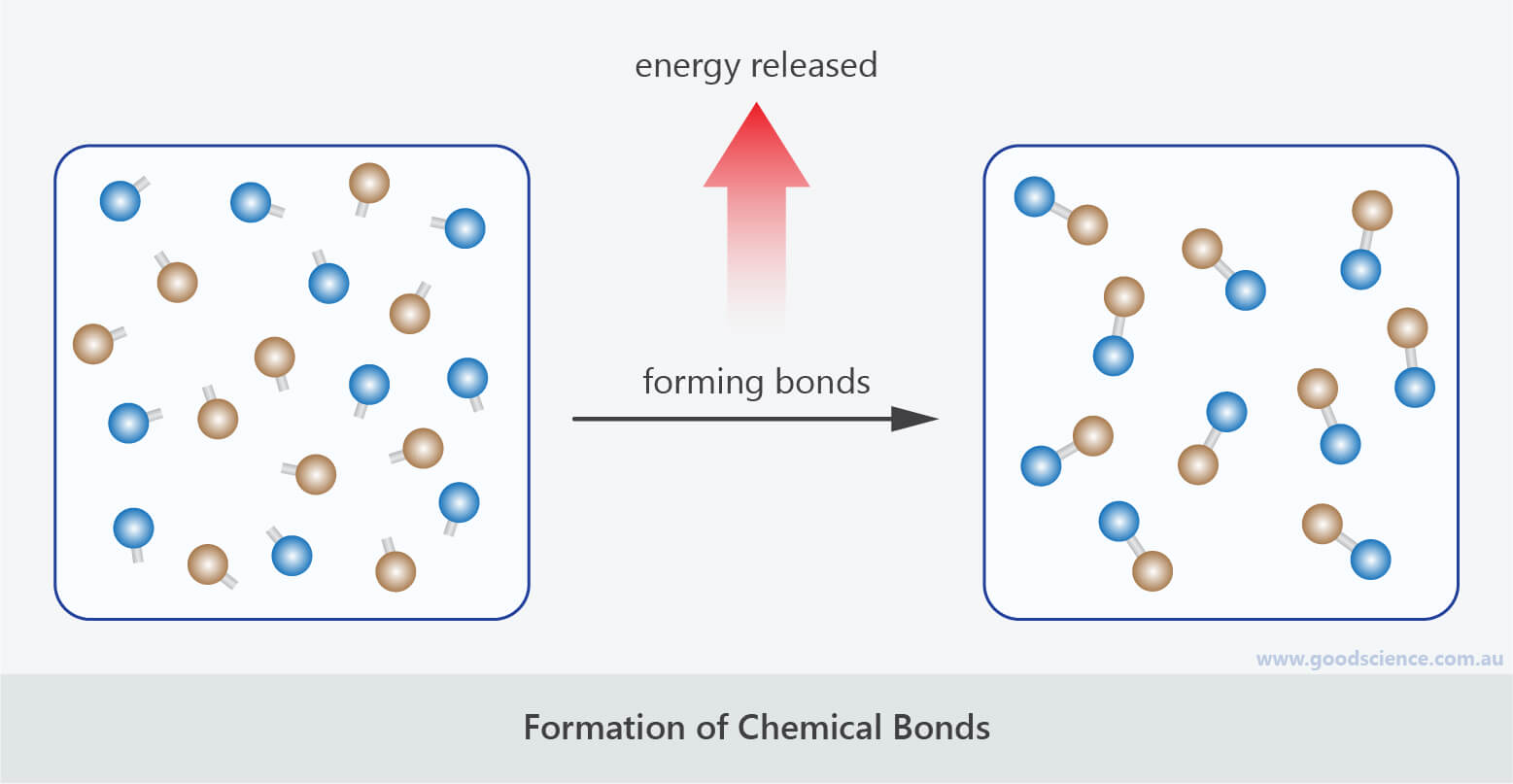 forming chemical bonds energy exothermic