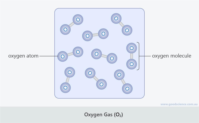oxygen gas O2 atom molecule