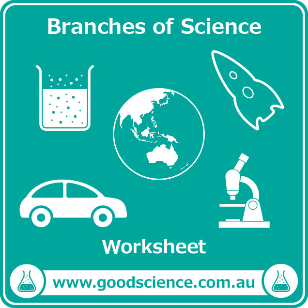 branches of science worksheet