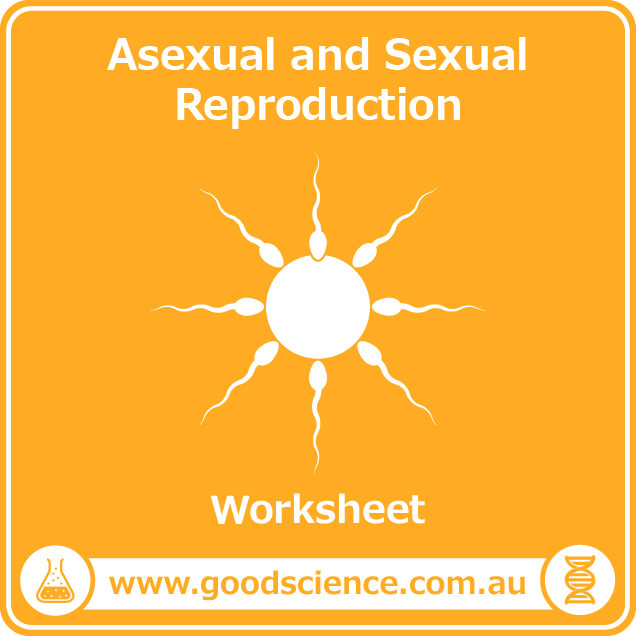 asexual and sexual reproduction worksheet