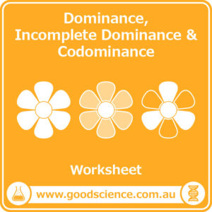 dominance incomplete dominance and codominance worksheet