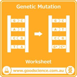 genetic mutation worksheet