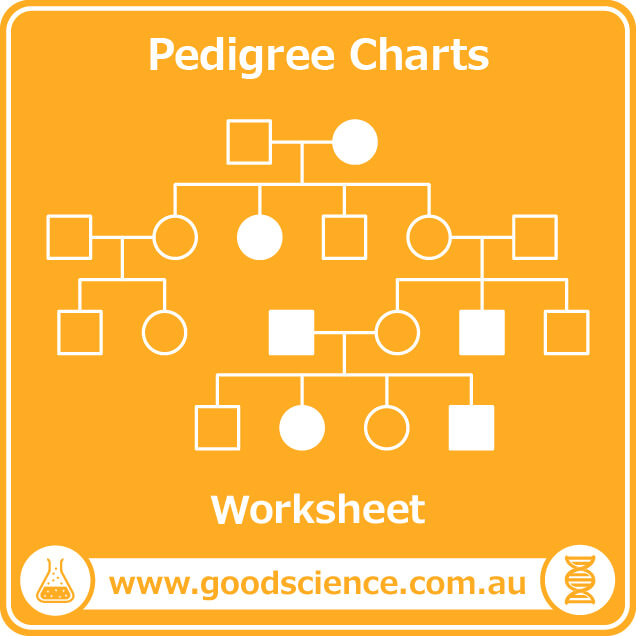 pedigree charts worksheet
