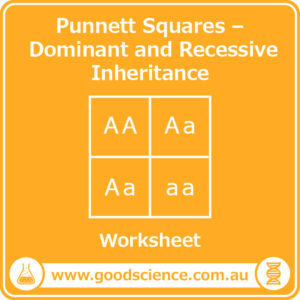 punnett squares dominant and recessive inheritance worksheet