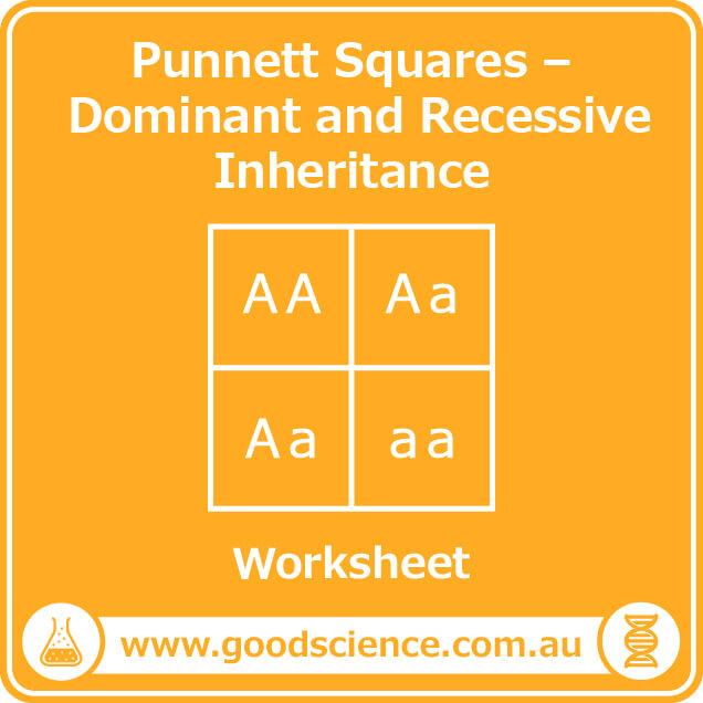 punnett squares dominant and recessive inheritance worksheet